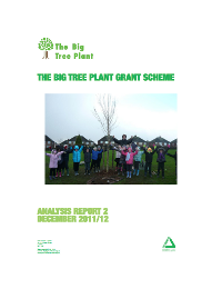 Groundwork - Big Tree Plant
